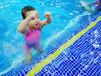 湖州嬰兒游泳洗澡_在貝貝鯨學習游泳意味著什么