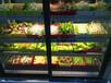 自助火鍋店選菜柜運城自助餐廳甜品冷柜,直角前開門西點柜