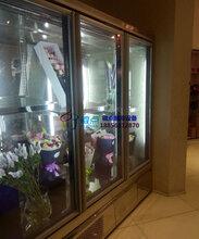 鲜花柜丹弗斯压缩机,徽点品牌鲜花保鲜柜,定做风冷鲜花柜