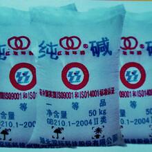 虎门碳酸钠/纯碱,价格多少?启达化工厂家低价批发供应(双环牌)优质纯碱/碳酸钠