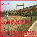 太原地区包塑铁线边框护栏网网孔护栏