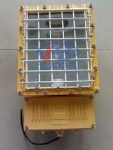 BTC6150防爆泛光灯250W400W防爆灯固定照明