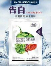 杀菌+修复美盛告白专业防治抗性白粉病,白粉病特效药草莓白粉病特效药
