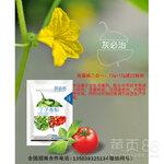 灰霉病特效药丁子香酚灰必治,防治灰霉病最好的特效药