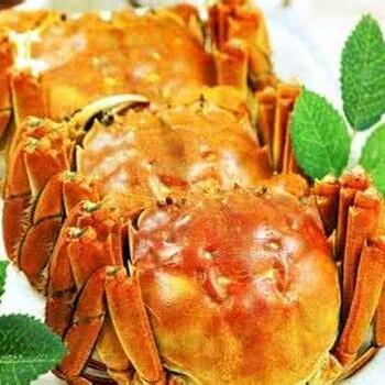 佳节之季,好蟹汇为您准备最优质的蟹礼!