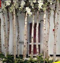 绿植墙花墙仿真草皮各种软装仿真花艺批发零售