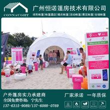 厂家直销湖南长沙6-12米球形星空酒店帐篷酒店篷房恒诺篷房定制