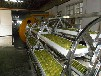 罗汉果真空干燥设备丨罗汉果微波真空机