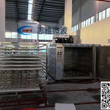 海綿微波干燥設備,海綿微波烘干設備,海綿烘干機圖片