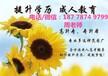 桂林理工大学直属函授站大专机电设备维修与管理高起专学费多少钱呢?