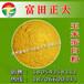 长期供应玉米蛋白粉饲料饲料原料饲料添加剂鸡肉粉