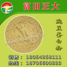 供应豌豆蛋白粉饲料饲料原料水产品畜禽养殖