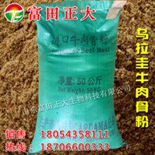 供应乌拉圭牛肉骨粉,饲料原料,家禽养殖饲料,水产养殖