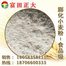 供应食品级膨化小麦粉,小麦粉图片
