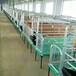 哪里销售母猪产床母猪连体床复合漏粪板的产床厂家好推荐沧州利祥农牧养猪设备厂