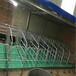 2.5国标热镀锌管母猪定位栏利祥农牧母猪限位栏售后完善