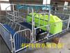 利祥农牧供应于镀锌管的养猪设备新式母猪产床母猪产子床