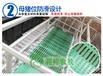 养猪设备厂家大型养殖设备母猪产床