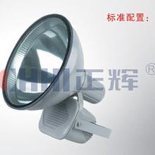 正辉照明CNT9500高亮度长寿无极灯165W高亮度长寿无极灯价格图片
