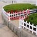 山西太原草坪护栏PVC护栏花园栅栏花池护栏厂家直销