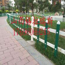 山西临汾草坪护栏草坪栅栏草坪围栏PVC护栏质量保证图片