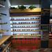 山西太原精品鈦合金展示柜商場首飾手機眼鏡展示貨架