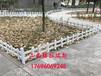 太原市政园林绿化护栏草坪围栏白色塑钢草坪护栏