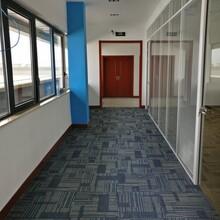 上海地毯清洗,地板打蜡,大理石翻新打蜡图片