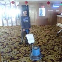 上海地毯清洗保洁专业别墅、办公室地毯清洗图片