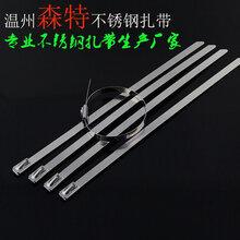 浙江电缆捆绑不锈钢扎带厂家直销国标304船用不锈钢扎带8100特价