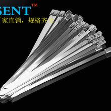 温州专业不锈钢扎带制造厂家森特304船用耐酸碱金属捆绑扎带7.9300