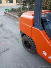 枣庄吉鑫祥叉车总代理1-45吨出售另3吨合力升4米全新发动机变速箱仅3.6万图片