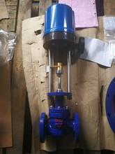 山东纺织印染机械配套电动单座柱塞调节阀图片