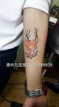 惠東哪里有洗紋身之卡通鹿紋身惠州惠陽哪里有紋身店圖片