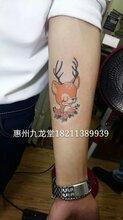 惠东哪里有洗纹身之卡通鹿纹身惠州惠阳哪里有纹身店图片