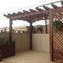 草字头生态屋顶绿化图片