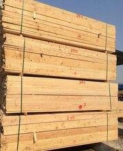 九江工地用建筑木方图片