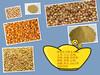 旺川饲料常年求购:玉米、大豆、棉粕、DDGS