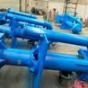 廠家熱銷65QV-SP立式液下渣漿泵不銹鋼抽沙泵遠工泵業