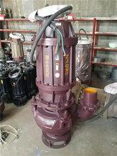 ZJQ50-26-11潜水渣浆泵立式潜水渣浆泵潜水污水泵