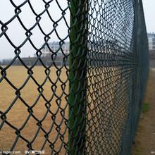 学校绿色铁丝网&学校专用铁丝网&学校铁丝网厂家