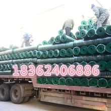 养鸡&鸭&鹅绿色围栏铁丝网&铁丝网厂家直销