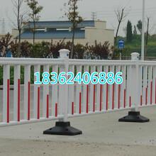 市政道路围栏网&道路准用围栏网&生产厂家直销