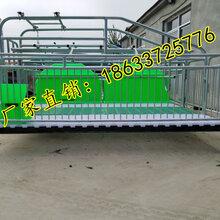 养猪设备2.13.6双猪位产床镀锌管焊接亨特行业领先