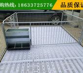 养猪设备小猪保育床2.13.6双筋塑料板亨特不二之选