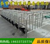 天津北辰母猪定位栏母猪单体栏厂家直销