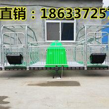 浙江嘉兴猪用产床价格2.2.6复合产床厂家