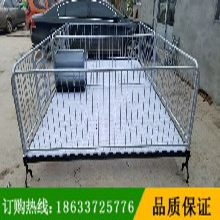 河南鹤壁小猪双体保育床复合保育床价格