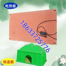 河南鹤壁母猪产床猪用产床厂家新型产床分娩用优势