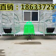 重庆南川复合母猪产床半复合板半塑料板母猪产床厂家
